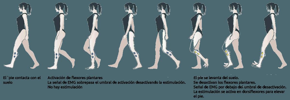 Movimiento de caminar